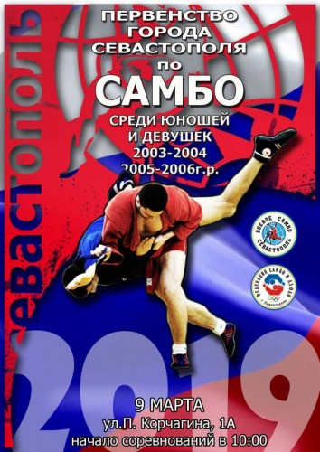 плакат самбо город